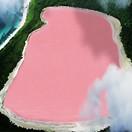 粉�t色湖泊的秘密