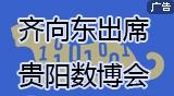 齐向东出席@贵阳数博会