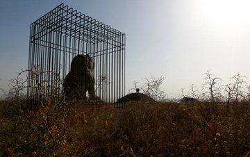 """咸阳唐贞陵两尊石狮被""""关""""防盗铁笼"""