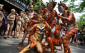 三亚举行人体彩绘活动 模特扮老虎表演
