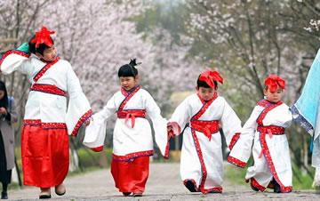 常州古装萌娃樱花树下学传统礼仪