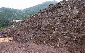 重庆发现150米长世界级