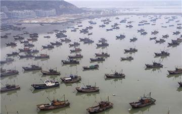 江苏连云港渔船进港避寒潮 场面壮观