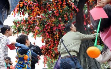 香港许愿节举行 市民到许愿树抛宝牒