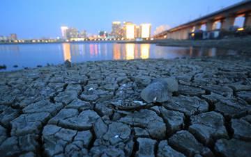 松花江哈尔滨段水位11年来最低 江道干涸鱼死蚌枯
