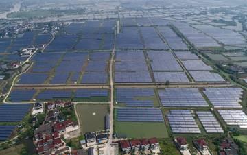 """浙江湖州:千亩鱼塘变身""""绿色发电站"""""""