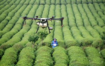 贵州安顺:无人机植保促增收