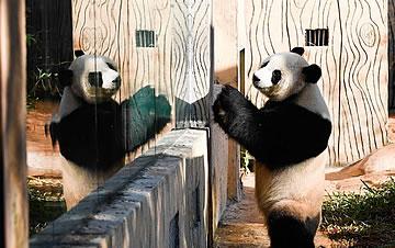 海口:大熊��废砼�冬
