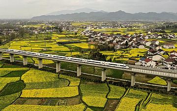 美丽家园 生态中国
