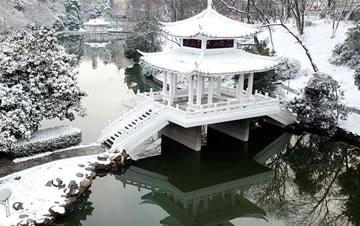合肥:环城公园雪景美