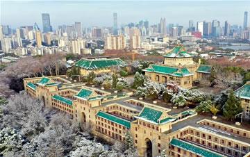 武汉大学雪后如画