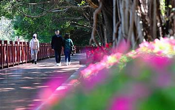 福州市区部分公园有限开放