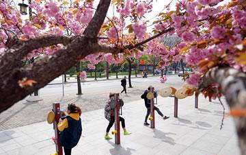 西安:春光好 健身乐