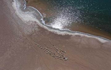 内蒙古巴丹吉林沙漠深处群湖竞艳