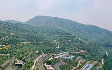 河北丰润生态农业园:荒山披绿 农民致富