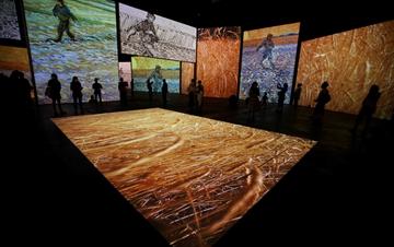 先睹为快 梵高沉浸式画展即将在悉尼开幕