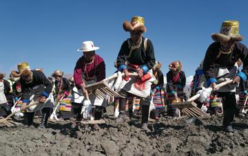 """春耕之歌唱�西藏""""民主改革第一村"""""""