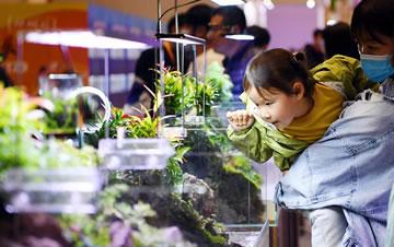 中部(郑州)宠物水族博览会举行