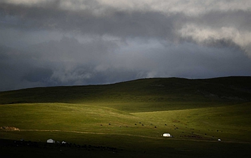 夏日高原牧场