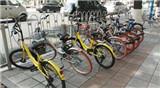 北京拟调控减量共享单车