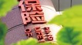 春节保险市场图鉴