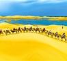 沙漠旅游升温