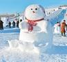奇趣雪雕引客来