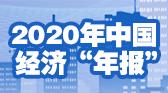 2020中国经济年报.png