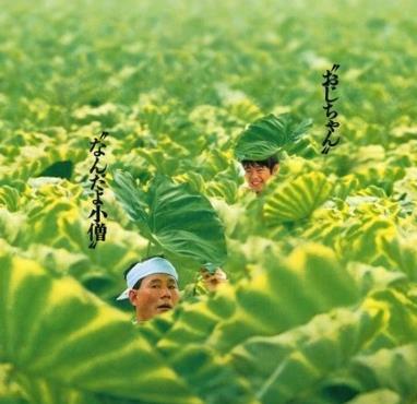 《菊次郎的夏天》