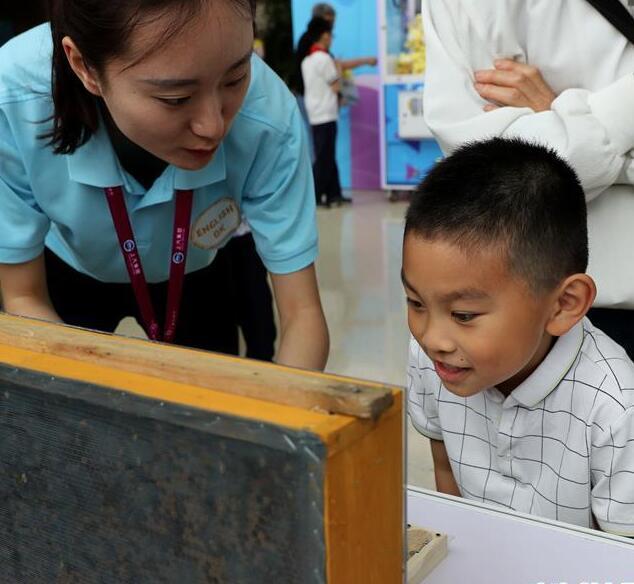 上海青少年科技节