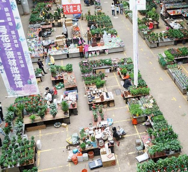 昆明国际花卉展