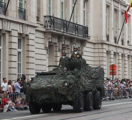 比利时庆祝国庆日