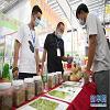 种业博览会