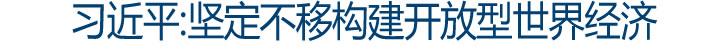 习近平:坚定不移构建开放型世界经济