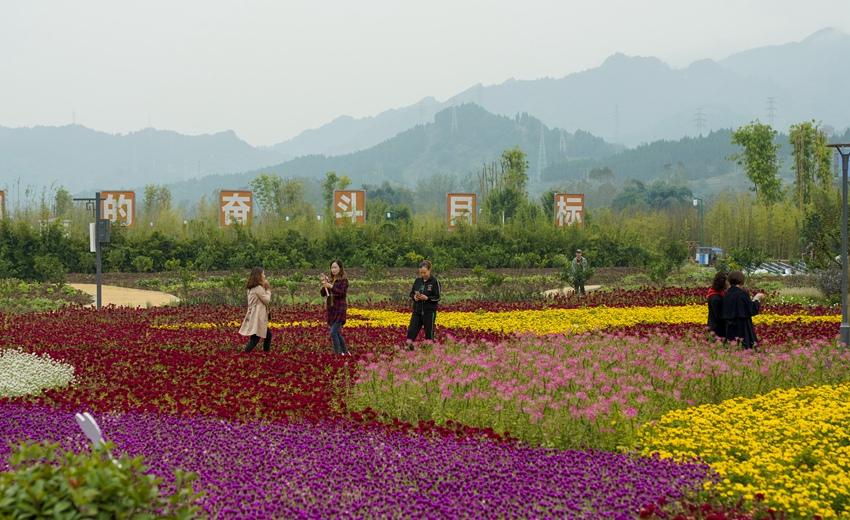 重庆开州打造宜居宜业宜游的新农村