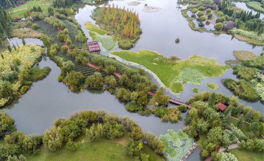 COP15展览展示项目昆明宝丰半岛湿地免费开放