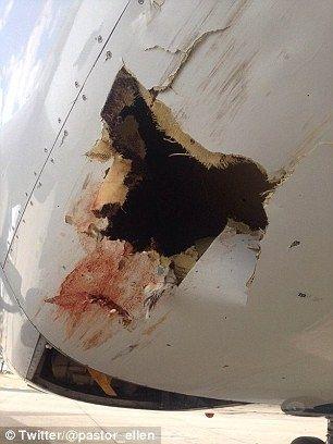一只大鸟在a319飞机降落时与其碰撞