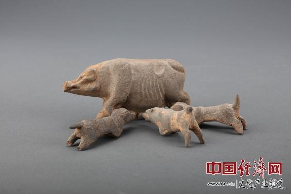 家和年丰 来首都博物馆看猪年生肖文化展
