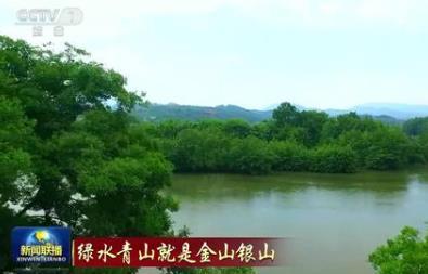 水清京美工业发展