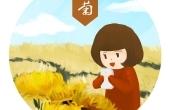 【赏菊并饮菊花酒】