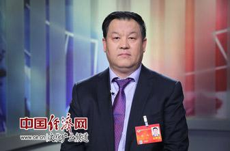 全国政协委员、中国文化产业协会会长张斌