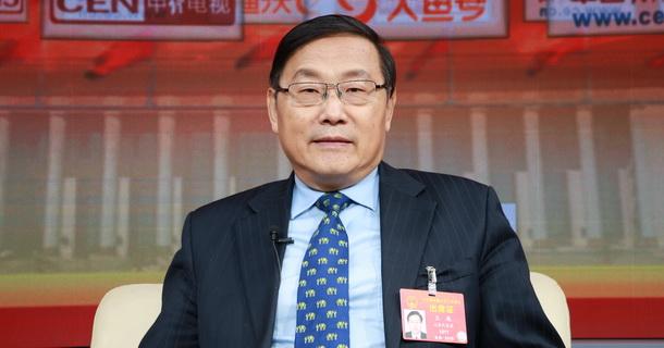全国人大代表、中国考古学会理事长王巍