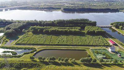 浑河中游水污染控制与水环境综