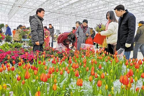 春节黄金周:市场人气旺 消费亮点多