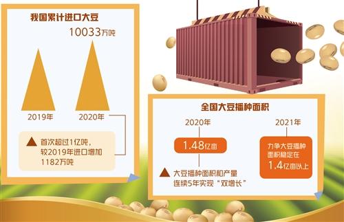 2020年进口首次超亿吨 大豆行业如何破困局