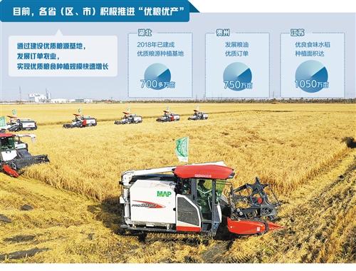 """粮食产业仍存短板 加快打造""""中国好粮油""""供应链"""