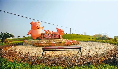 探访全国最大生猪养殖省四川生猪生产一线:放心肉放心吃!