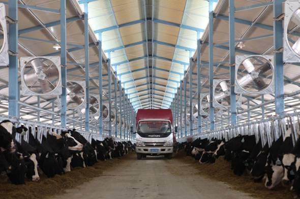"""5万吨饲草料加3000余万元物资 蒙牛保障牧场战""""疫""""最关键时期过三关"""