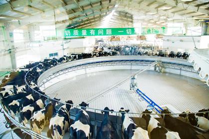 全产业链质量安全下的一杯牛奶,是如何在蒙牛诞生的