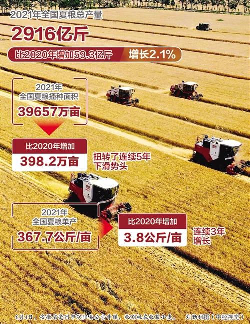 我国夏粮再获丰收:总产量2916亿斤,比去年增长2.1%